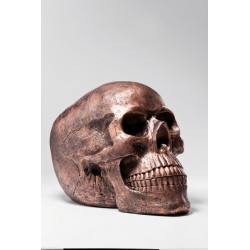 Figura Skull Head Copper Antique