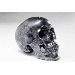 Hucha Skull Silver Antique