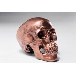 Hucha Skull Copper Antique
